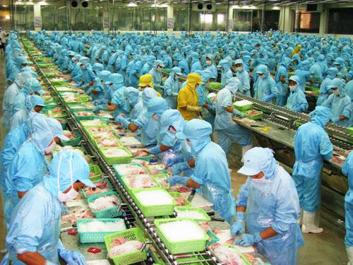 Tuyển 24 nữ làm chế biến thủy sản tại Hokkaido tháng 3/2016