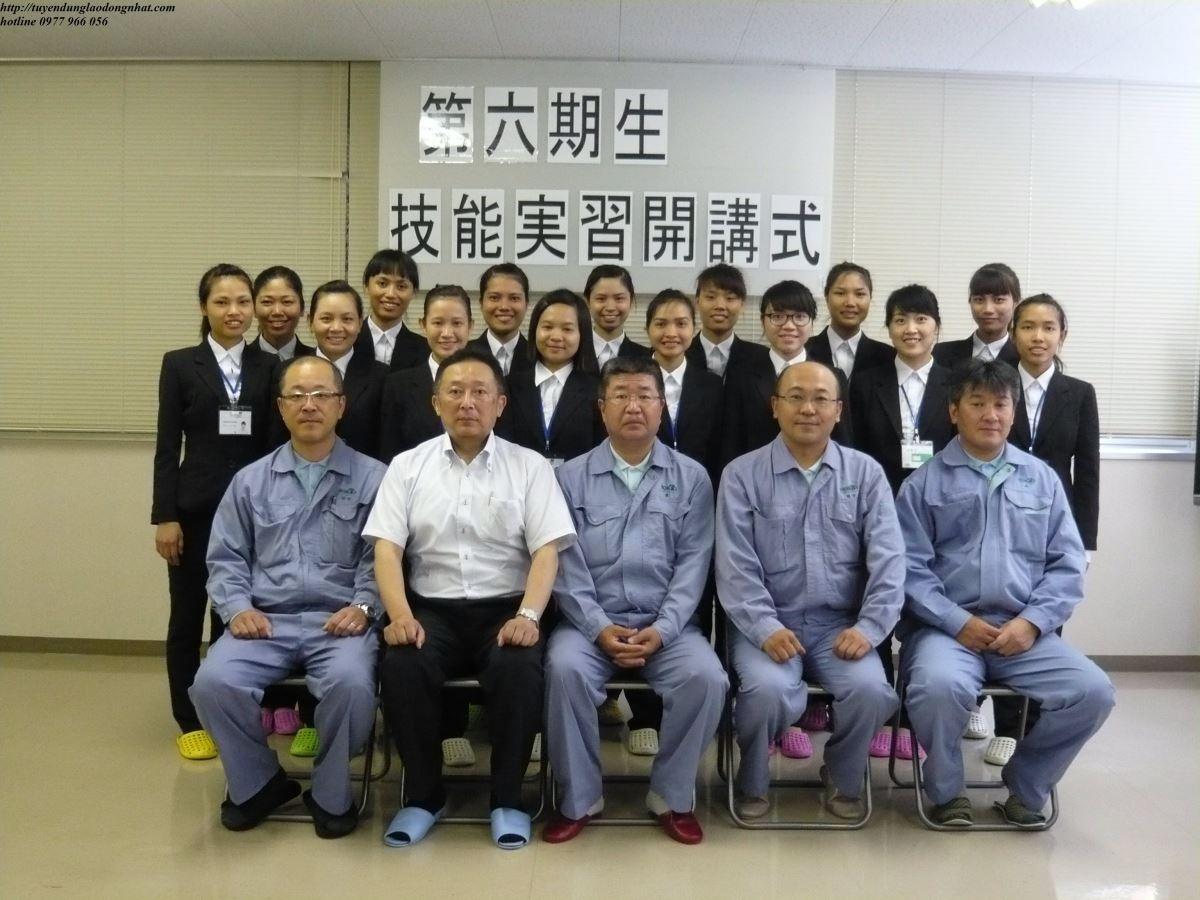 Lao động xuất khẩu Nhật Bản đa dạng ngành nghề?