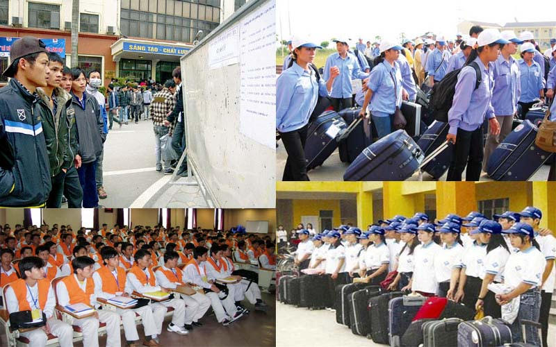 Nên đi xuất khẩu lao động Đài Loan hay Nhật Bản