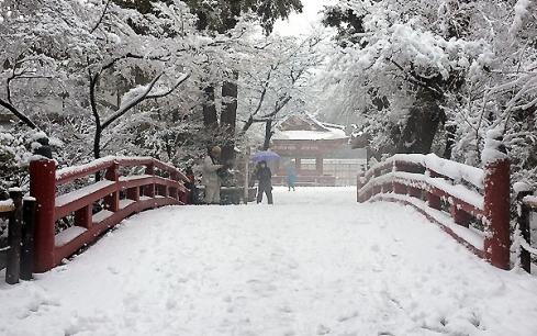 Hokkaido đón tuyết rơi lạnh kỉ lục nhất 5 năm qua