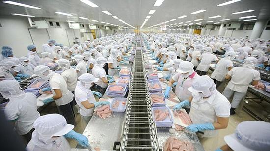 Tuyển gấp 20 nữ đi XKLĐ tại Nhật Bản làm chế biến thực phẩm