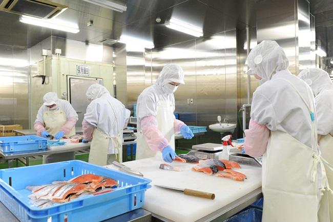 Phụ nữ nên đi Nhật đơn hàng thực phẩm hay đơn hàng nông nghiệp