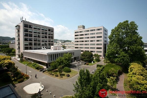 trường đại học tại Ibaraki- khám phá những điều đặc sắc nhất tại tỉnh Ibaraki -Nhật Bản