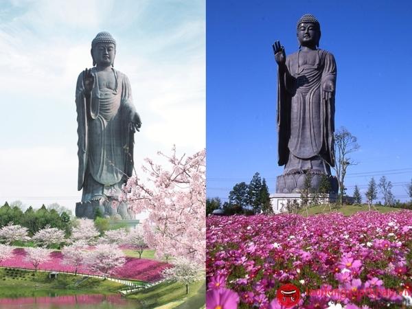 Tượng phật Ushiku-khám phá những điều đặc sắc nhất tại Ibaraki -Nhật Bản