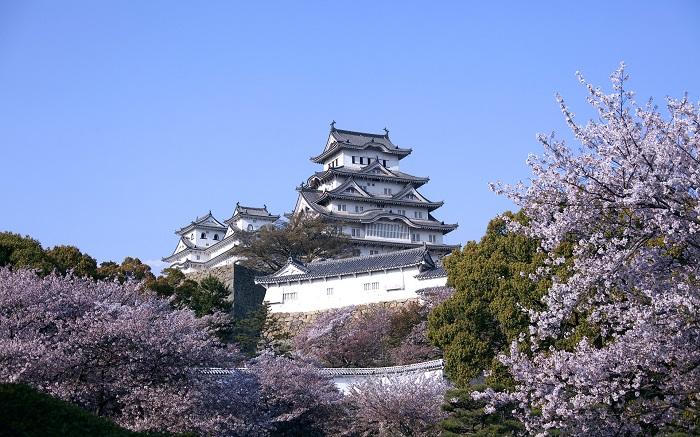 Tổng hợp đơn hàng mức lương tốt  tháng 10 XKLĐ tỉnh Aichi - Nhật Bản