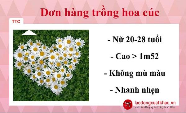 3 hoạt động nổi bật tại TTC Việt Nam ngày 07/09/2017