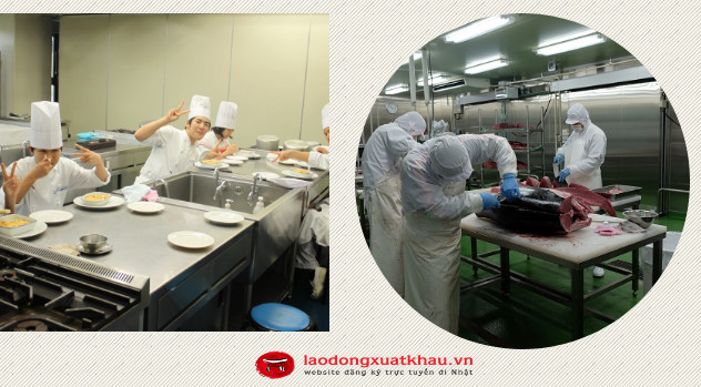 Đơn hàng chế biến thực phẩm tại Hokkaido tuyển 56 Nữ làm việc tại Nhật Bản
