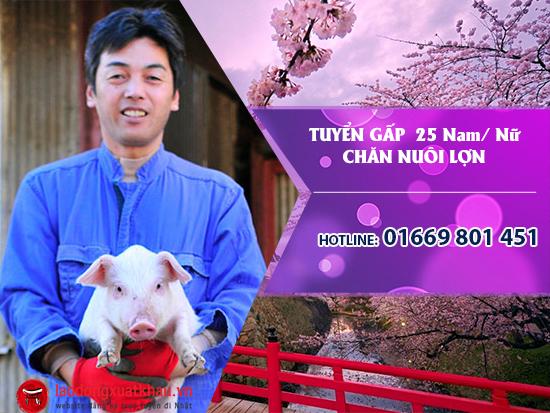 Đơn hàng chăn nuôi lợn tại Nhật tuyển gấp 25 Nam/ nữ lương cao, xuất cảnh tháng 02/2018