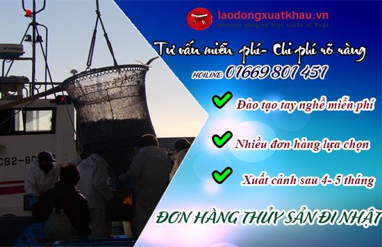 Những điều cần biết khi tham gia XKLĐ đơn hàng thủy sản tại Nhật Bản
