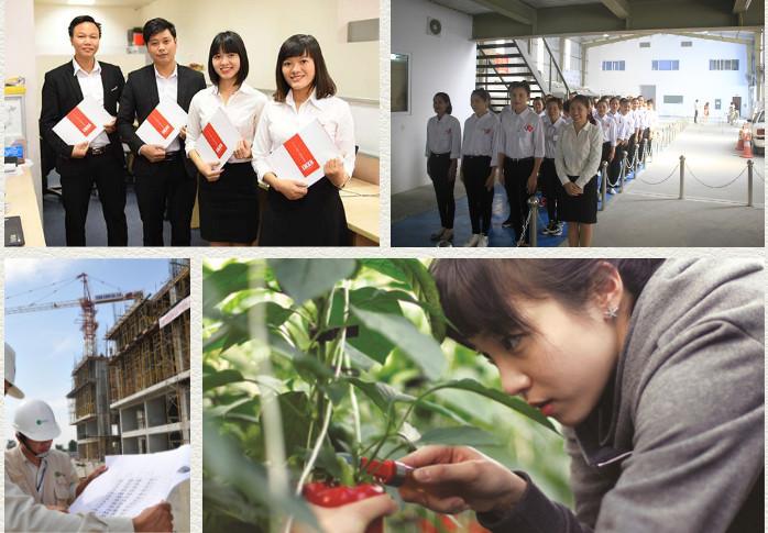 5 bước lựa chọn các công ty XKLĐ Nhật Bản uy tín