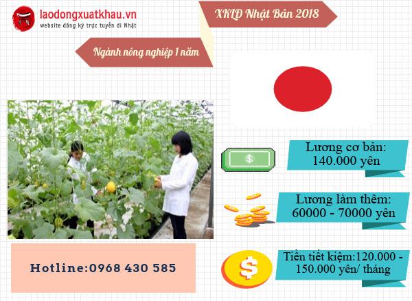 Đơn hàng nông nghiệp XKLĐ Nhật Bản có đơn hàng 1 năm không?