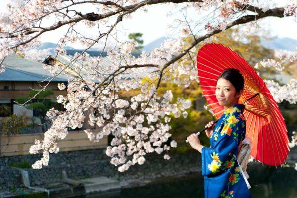 Lễ Hội Higan Nhật Bản là gì? Sự khác biệt của Tiết Thanh Minh Việt Nam và Nhật Bản