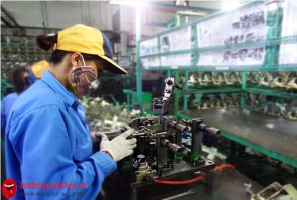 Đơn hàng nam/nữ đi Nhật việc nhẹ lương cao: kiểm tra sản phẩm
