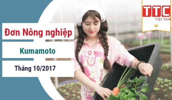 Làm nông nghiệp ở Kumamoto có gì đặc biệt?