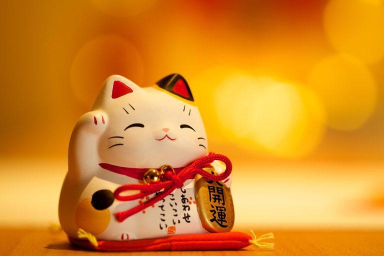 Mèo maneki neko - chú mèo chỉ cần vẫy tay là gọi được may mắn đến