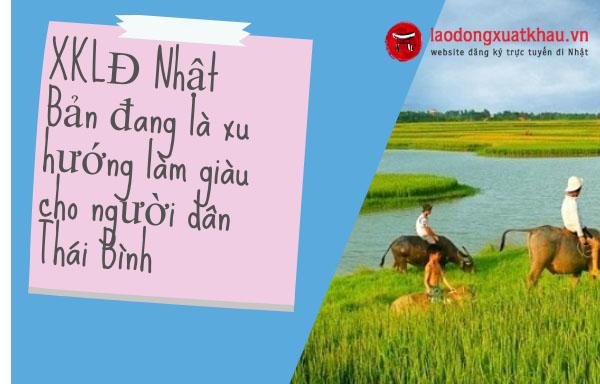 Công ty xklđ nhật Bản uy tín ở tỉnh Thái Bình