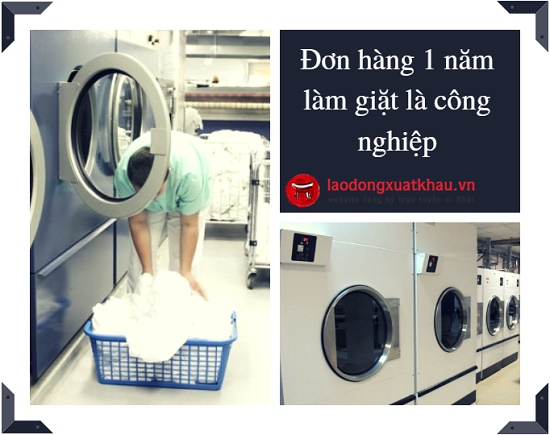 Đơn hàng 1 năm: 15 nữ làm giặt là công nghiệp tại Saga Nhật Bản