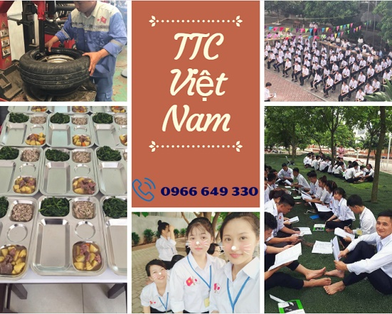 Cập nhật đầy đủ danh sách trung tâm đào tạo của TTC Việt Nam