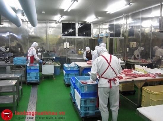 Đơn hàng chế biến thịt bò đi Nhật: lương cao hơn cả kỹ sư