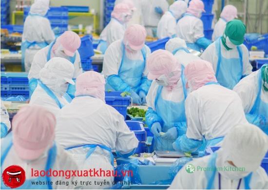 Tuyển gấp 27 nữ làm đóng hộp rau gia vị tại Nara Nhật Bản