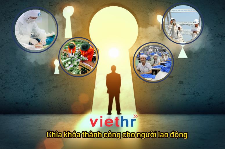 MD Việt Nam - Chìa khóa thành công cho người lao động