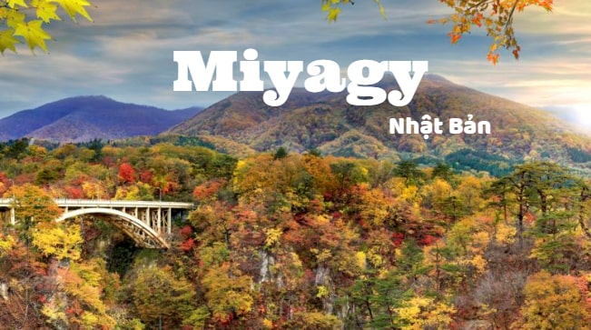 Có nên đi xuất khẩu lao động tại tỉnh Miyagi Nhật Bản hay không?