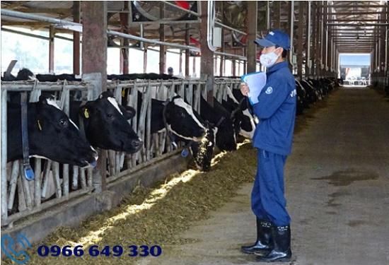 Kỹ sư chăn nuôi làm việc tại Nhật Bản lương tháng 2000$