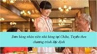 Đơn hàng nhân viên nhà hàng tại Chiba, Tuyển theo chương trình đặc định
